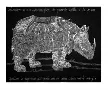 Rhinocéros 100x80 cm